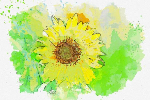 Painting - Flower Chichewa Live Vivid Color Flowers Plant -  Watercolor By Adam Asar by Adam Asar