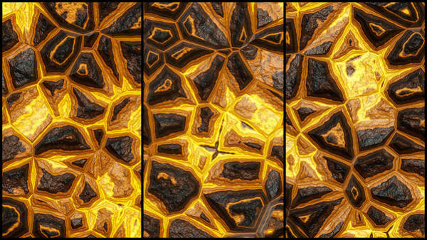 Digital Art - Flower Stone Wall Triptych by Don Northup