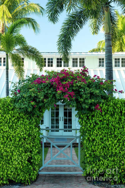 Photograph - Flowers And Old Cottage Naples Florida by Brian Jannsen