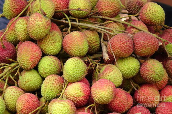 Photograph - Fresh Lychee For Sale by Yali Shi