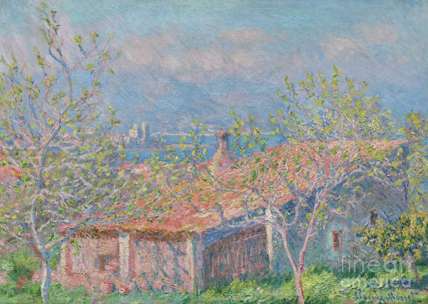 Wall Art - Painting - Gardeners House At Antibes, 1888 by Claude Monet