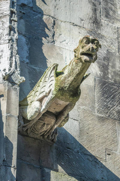 Wall Art - Photograph - Gargoyle, Rouen, Normandy, France by Jim Engelbrecht