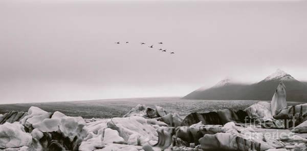 Photograph - Glacial Ice Melting On Mountais Of Iceland by Joaquin Corbalan