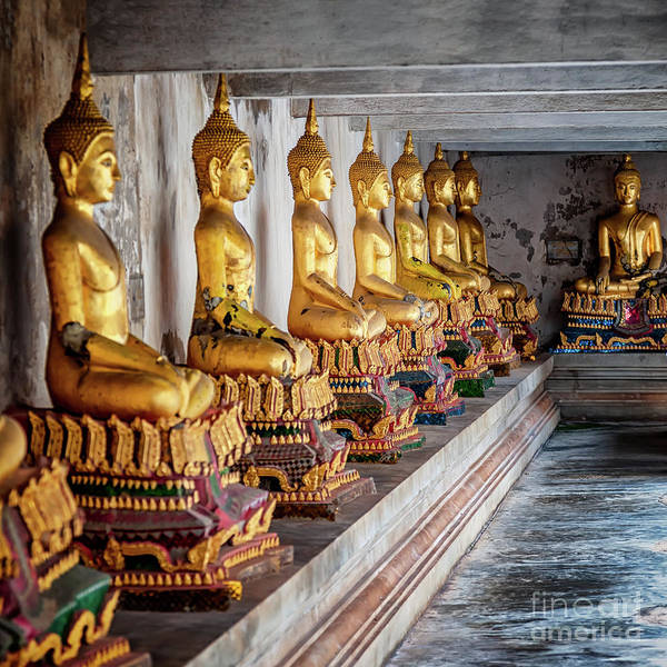 Thai Wall Art - Photograph - Golden Buddhas by Adrian Evans
