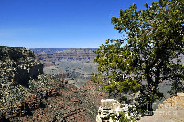 Wall Art - Photograph - Grand Canyon 05 by Andrew Dinh