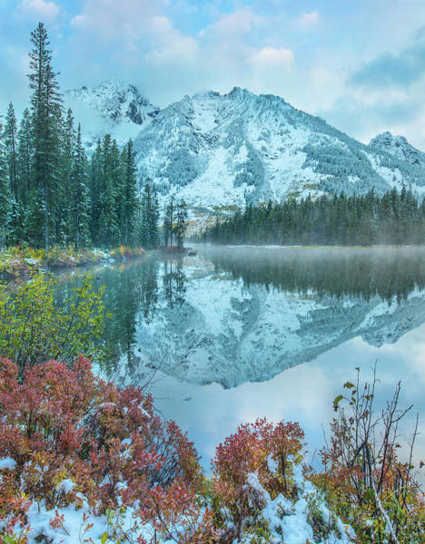 Wall Art - Photograph - Grand Tetons From String Lake by Tim Fitzharris