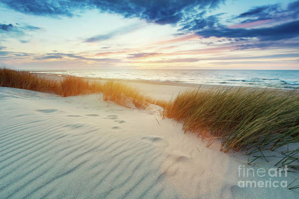 Wall Art - Photograph - Grassy Dunes And The Baltic Sea At Sunset by Michal Bednarek