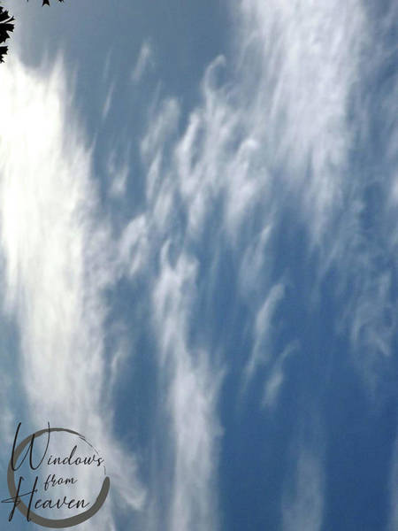 Photograph - Great Cloud Of Witnesses by Matthew Seufer