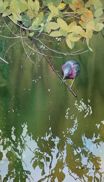 Wall Art - Painting - Green Heron, Red Mangrove by Kris Parins