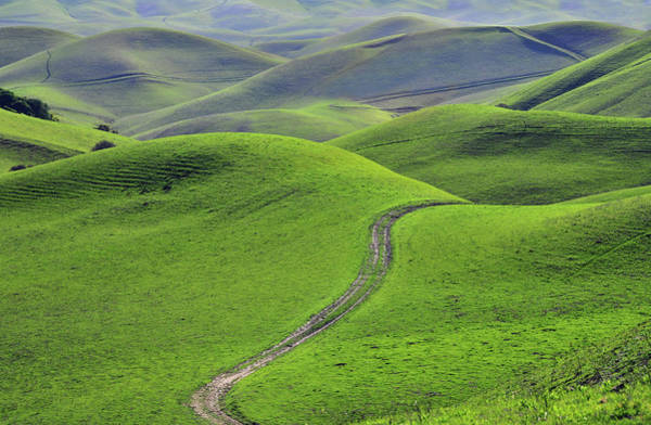 Livermore Wall Art - Photograph - Green Hills With Road by Mitch Diamond