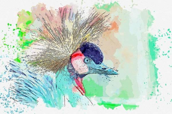 Painting - Grey Crowned Crane -  Watercolor By Ahmet Asar by Ahmet Asar