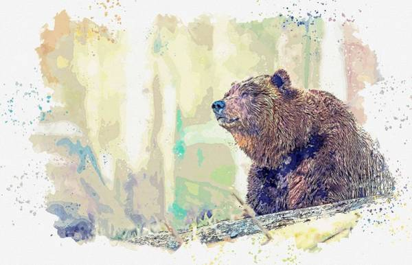 Wall Art - Painting - Grizzly Bear, Watercolor By Adam Asar by Adam Asar