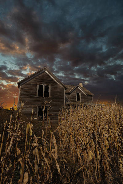 Cornfield Photograph - Haunted by Aaron J Groen