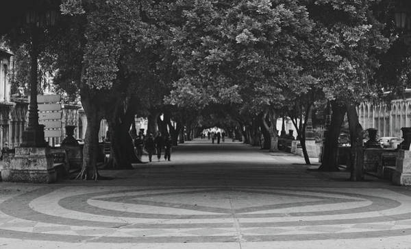 Prado Photograph - Havana's Prado Promenade  by Mountain Dreams