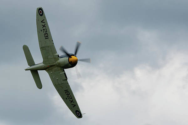 Photograph - Hawker Sea Fury Fly By At Raf Cosford 2019 by Scott Lyons