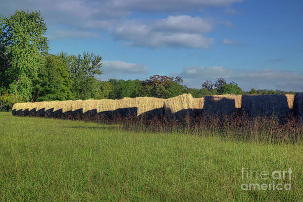 Wall Art - Photograph - Hay Bales In A Row by Larry Braun