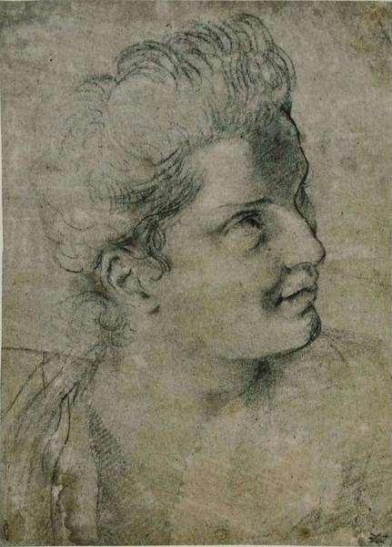 Wall Art - Painting - Head Of A Woman  by Annibale Carracci