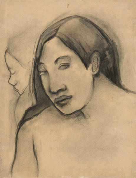 Wall Art - Drawing - Heads Of Tahitian Women, Frontal And Profile Views by Paul Gauguin