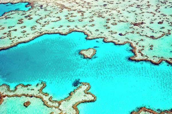 Reef Photograph - Heart Reef In The Great Barrier Reef by Australian Scenics