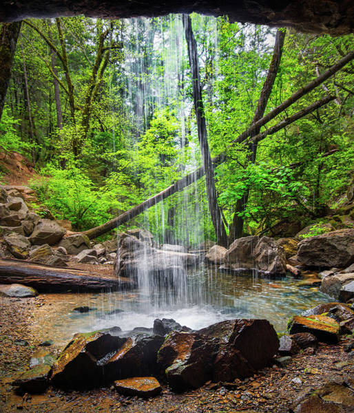 Conifer Photograph - Hedge Creek Falls by Leland D Howard