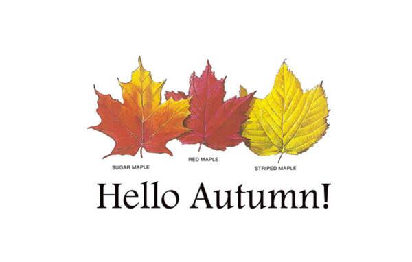 Digital Art - Hello Autumn by Jeff Folger