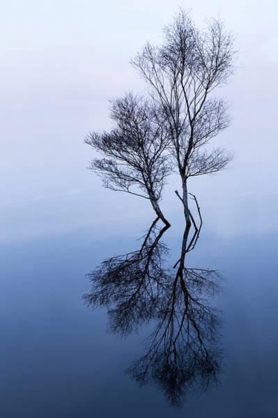 High Tide Photograph - High Tide by Niall Whelan
