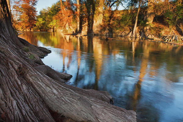 Bald Cypress Wall Art - Photograph - Hill Country At Autumn, Guadalupe by Danita Delimont