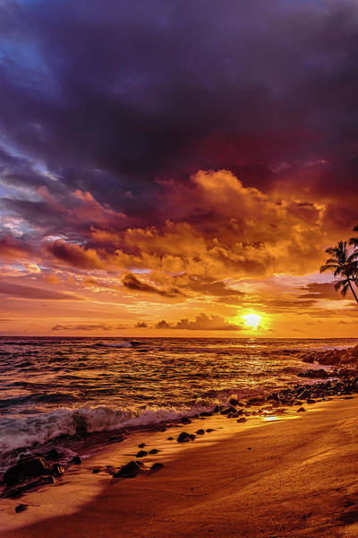 Photograph - Honl Beach by John Bauer