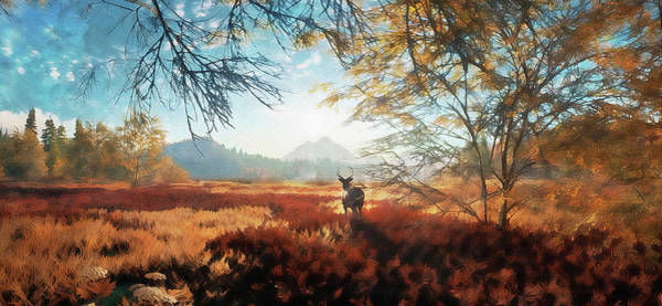 Painting - Into The Wild - 07 by Andrea Mazzocchetti