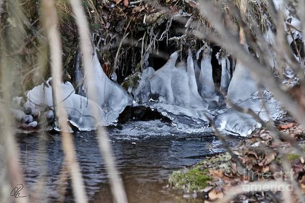 Photograph - It Never Freezes by Ann E Robson