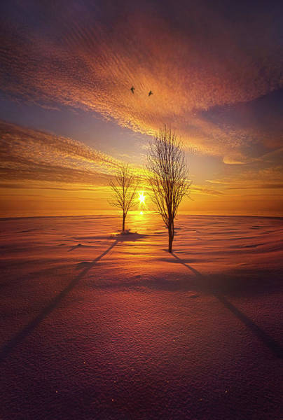 Photograph - Just You And I by Phil Koch