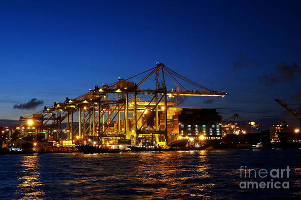 Photograph - Kaohsiung Container Port After Dusk by Yali Shi