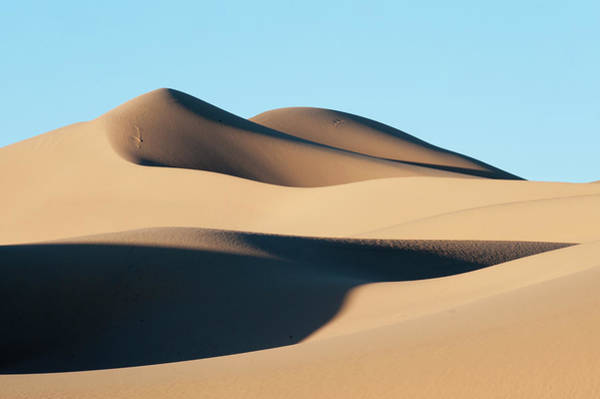 Photograph - Khongoryn Els Sand Dunes In Southern by David Tipling