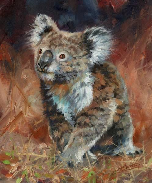 Australian Wildlife Wall Art - Painting - Koala by David Stribbling