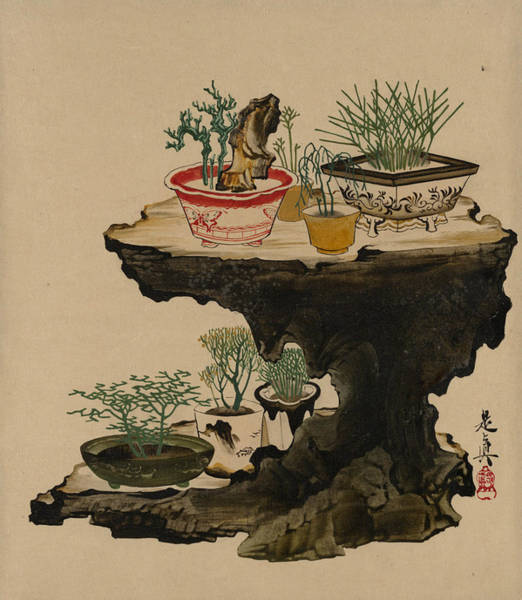 Painting - Lacquer Paintings Of Various Subjects - Bonsai by Shibata Zeshin