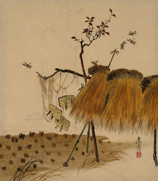 Painting - Lacquer Paintings Of Various Subjects - Stack Of Rice And Dragonflies by Shibata Zeshin