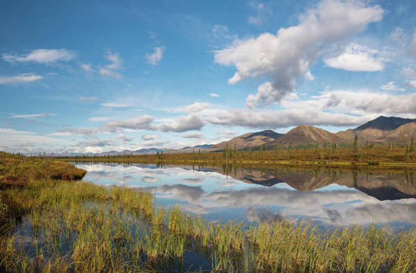 Wall Art - Photograph - Lake In Autumnal Tundral Landscape Alaska Range Central Alaska Alaska Usa by imageBROKER - Robert Haasmann