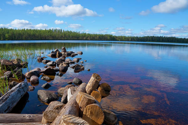 Woodland Photograph - Lake In Finland by Anzeletti