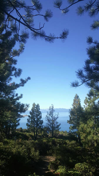 Wall Art - Photograph - Lake Tahoe Is Surrounded By Woods, Trees, Plants And Many Hiking by Kim Vermaat