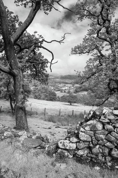Barmouth Photograph - Landscape Image Of View From Precipice Walk In Snowdonia Overloo by Matthew Gibson