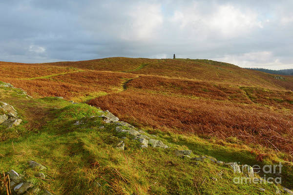 Wall Art - Photograph - Latterbarrow In Lake District National Park Cumbria by Louise Heusinkveld
