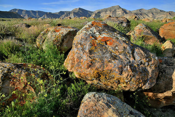 Photograph - Lichen Covered Boulders Of Book Cliffs by Ray Mathis