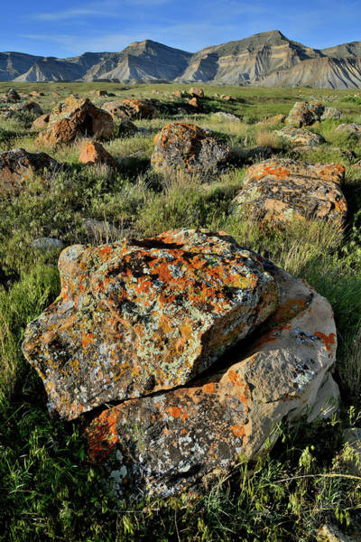 Photograph - Lichen Covered Boulders Of The Book Cliffs by Ray Mathis