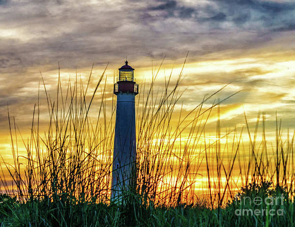 Photograph - Lighthouse Sunset by Nick Zelinsky