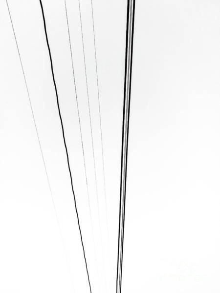 Photograph - Lines by Fei A