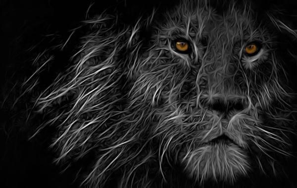 Digital Art - Lion King by Carlos Diaz