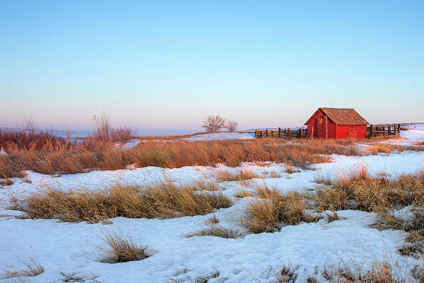 Photograph - Little Red Shed by Todd Klassy