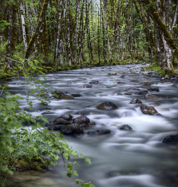 Environmental Issues Photograph - Long Exposure Of Water Flowing In Stream by Bike maverick