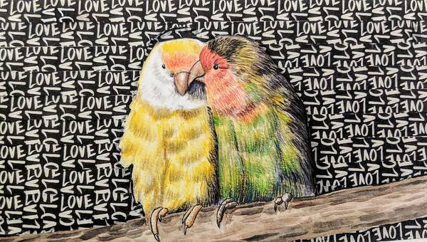 Love Mixed Media - Love Birds by Rebecca Rodriguez
