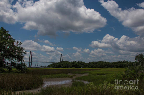 Photograph - Lowcountry Blue Skies by Dale Powell